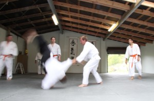 Aikido auckland grading